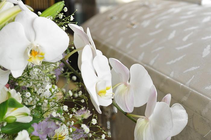胡蝶蘭をメインとした供花と棺
